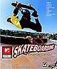 Spieletest: MTV Sports Skateboarding - Die PC-Halfpipe