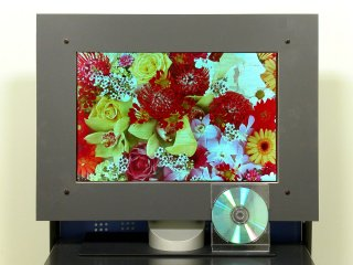OLED-Prototyp von International Display Technology