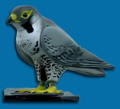 webgesteuerter vogelroboter soll tauben verjagen. Black Bedroom Furniture Sets. Home Design Ideas