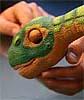 Interview: Roboter-Dino Pleo kommt nach Deutschland
