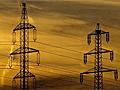 Wire Worm - der Stromleitungskiller
