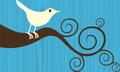 Facebook wollte Twitter für 500 Millionen US-Dollar kaufen