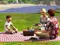 Sims 3: Doch für Spieleprofis?