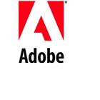 Adobe: Patch für Flash Player und PDF-Applikationen