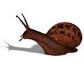 Snailmailr: Post aus dem Web