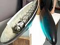 Gymnobot - der Fischroboter aus Bath