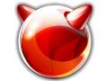 FreeBSD in neuer Version 8.0 erschienen