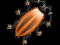 Firebug 1.5.0 veröffentlicht