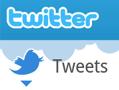 Offizieller Twitter-Client für Android