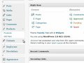 Blogsoftware: Wordpress 3.0 im neuen Kleid