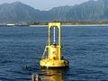 Erneuerbare Energie: US-Unternehmen baut Wellenkraftwerk im Nordwesten der USA