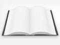 Digitale Literatur 2010: Wo bleibt das echte E-Book?
