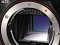Sony: Spiegelreflexkameras mit elektronischem Sucher