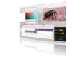 Freier Video-Editor: Kdenlive mit Effekt-Bearbeitung in der Monitor-Ansicht