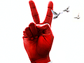 Big Red Internet: Kabelnetzbetreiber bietet Kunden 1 GBit/s