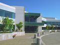 Microsofts Konzernzentrale
