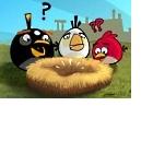 Angry Birds: Wütendes Federvieh fliegt auf Windows