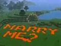 Spielentwickler Bioware: Heiratsantrag mit Minecraft