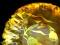 PhiloGL: Freies WebGL-Framework von Sencha