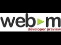 Webvideo: Google bringt dem Internet Explorer 9 WebM bei