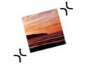 Texterkennung: Exactscan für den Mac