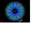 Teilchenphysik: Wissenschaftler weisen schwerste Antiteilchen nach