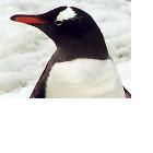 Linux: Mergefenster für Kernel 2.6.39 geschlossen