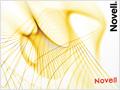 Novell: Identity Manager 4 Standard Edition veröffentlicht