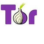 Unsicheres Filesharing: Bittorrent kompromittiert Tor-Nutzer