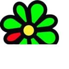 ICQ 7.5: Instant Messenger mit verbessertem Videochat