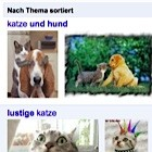 Google: Thematische Bildersortierung für bessere Suchergebnisse