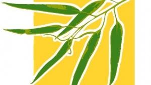 Das Eucalyptus-Logo