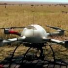 Tierfilm: Drohnen über der Serengeti