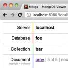 Datenbanken: Datenbrowser Mongs als Frontend für MongoDB