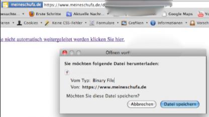 Screenshot der Sicherheitslücke