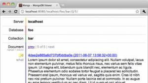Datenbankabfragen im Browser mit Mongs