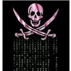 Hackerleaks: Wikileaks für erbeutete Daten