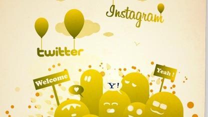 Instagram und Twitter bei Picatrine