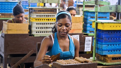 Zigarrenproduktion im Juli 2011 in Havana