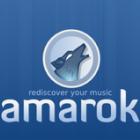 Freie Musikplayer: Amarok 2.4.3 mit aufgeräumter Benutzeroberfläche