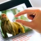 Push Pop Press: Facebook kauft eine neue Generation von Buch