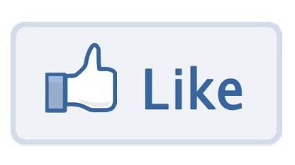 Facebook freut sich über die Verhaftung von Sanford Wallace.