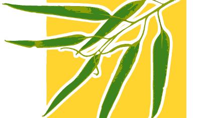 Eucalyptus unterstützt künftig Hochverfügbarkeit.