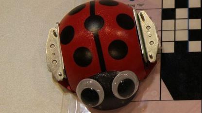 Zahnbürste und Vibrationsmotor: Ladybug Robot auf der Ifa