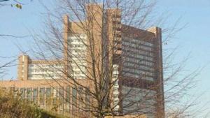 Urteil: ISPs haften nicht für Urheberrechtsverletzungen von Nutzern