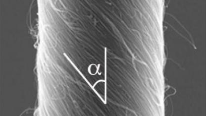 Nanofaden: 2.000-mal schweren Rührflügel angetrieben