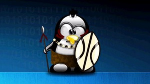 Sicher offline: Ubuntu Privacy Remix 10.04r2 tritt gegen Staatstrojaner an