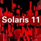 Oracle: Solaris 11 erhält Anwendungscontainer
