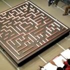 Unter vier Sekunden: Robotermaus rast durchs Labyrinth