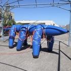 Ant-Roach: Blauer Aufblasroboter watschelt pneumatisch